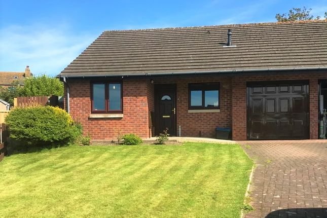 Thumbnail Bungalow for sale in Seacroft Drive, St Bees