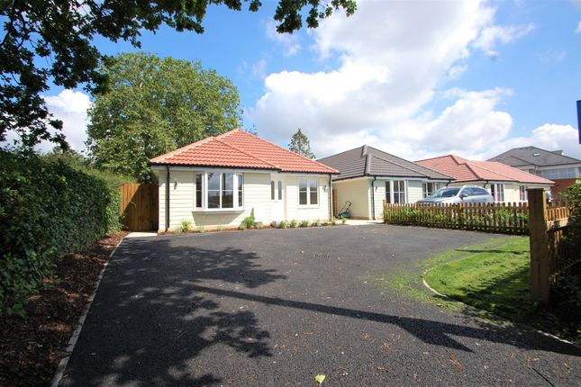 Thumbnail Detached bungalow for sale in Orchard Lodge, Station Road, Tiptree, Colchester
