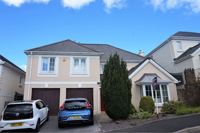 Thumbnail Detached house for sale in Gentian Close, Paignton