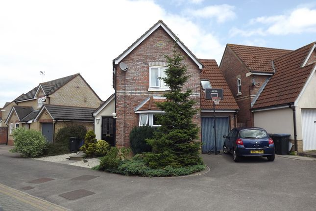 Thumbnail Detached house for sale in Albert Gardens, Harlow