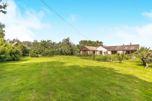 Thumbnail Detached bungalow for sale in Malting Farm Lane, Ardleigh, Colchester
