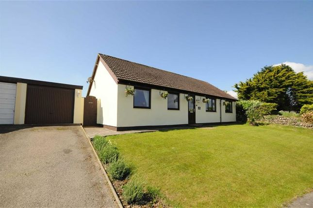 Thumbnail Detached bungalow for sale in Penkenna Close, Crackington Haven, Bude, Cornwall