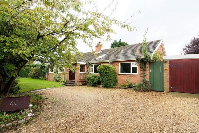 Thumbnail Detached bungalow for sale in Low Street, Crownthorpe, Wicklewood, Wymondham