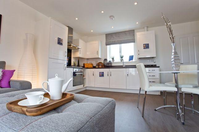 "Thumbnail Property for sale in ""The Nene"" at Irthlingborough Road, Wellingborough"