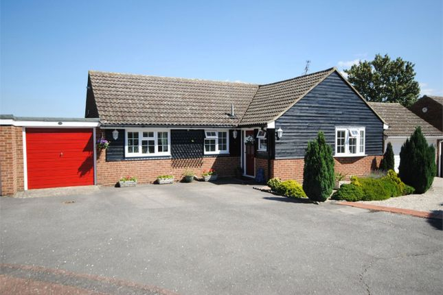 Thumbnail Detached bungalow for sale in White Mead, Broomfield, Chelmsford