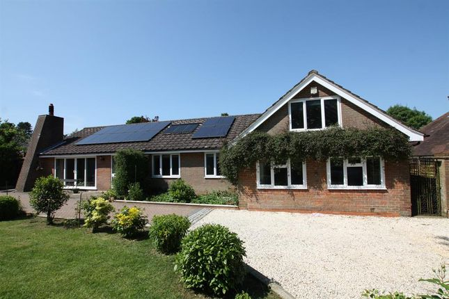 Thumbnail Detached house for sale in Jenkins Lane, St. Leonards, Tring