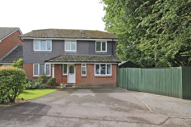 Thumbnail Detached house for sale in Doe Copse Way, New Milton