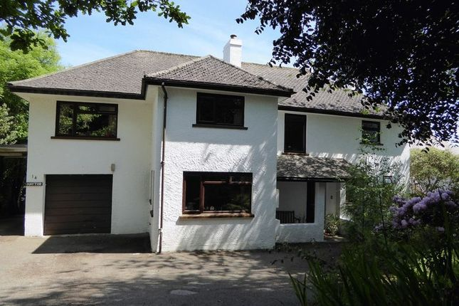 Thumbnail Detached house for sale in Trevone Crescent, Trewoon, St. Austell