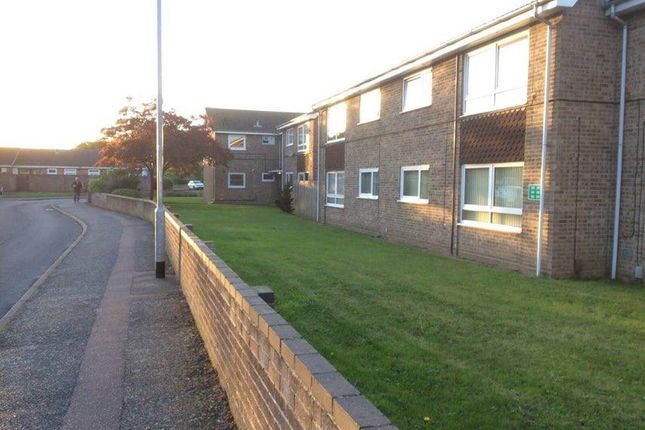 Thumbnail Flat to rent in Kingfisher Close, Bradwell