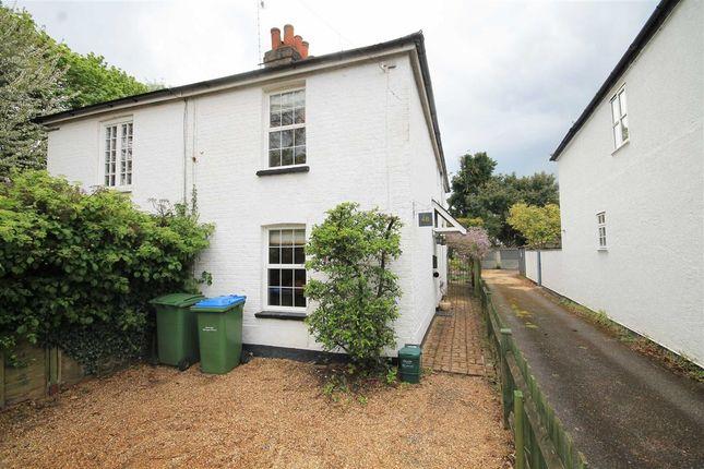 Thumbnail Property to rent in Rushett Close, Thames Ditton