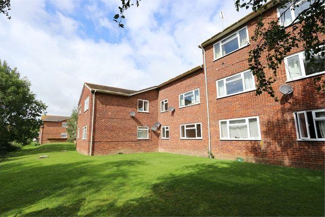 Flat to rent in Burnside Court, Black Path, Polegate, East Sussex