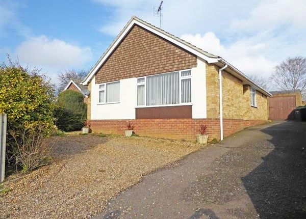 Thumbnail Detached bungalow for sale in Rosbrook Close, Bury St. Edmunds