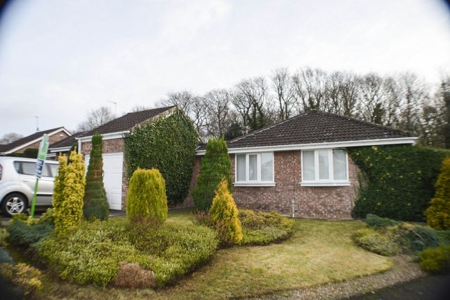 Thumbnail Bungalow to rent in Woodside, Prudhoe