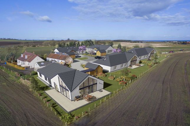 Thumbnail Detached house for sale in Crail, Anstruther