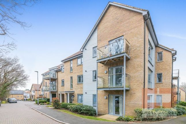 Thumbnail Flat to rent in Groundsel Walk, Hemel Hempstead