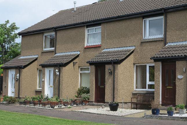 Thumbnail Terraced house to rent in Stuart Crescent, Craigmount, Edinburgh