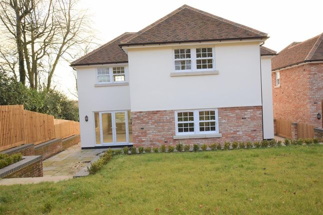 Thumbnail Detached house to rent in Colchester Road, White Colne, Colchester