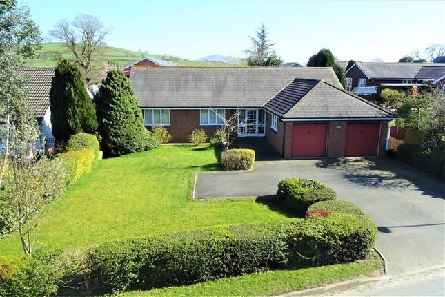 Thumbnail Bungalow for sale in 7, Holly View, Forden, Welshpool, Powys