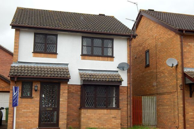 Thumbnail Detached house to rent in Haverscroft Close, Thorpe Marriot, Norwich