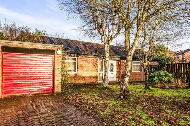 Thumbnail Bungalow for sale in Ashling Court, Tyldesley, Manchester