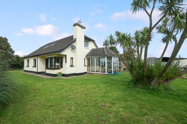 Equestrian property for sale in Abbey Road, Millisle