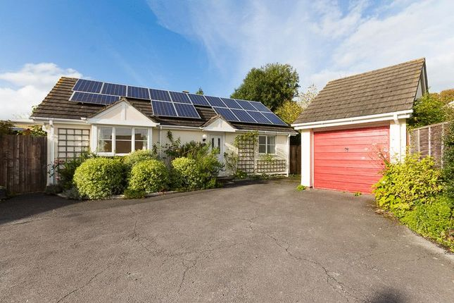 Thumbnail Detached bungalow for sale in Clifford Close, Clifford Street, Chudleigh