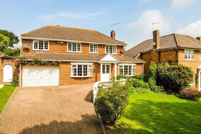 Thumbnail Detached house for sale in Gillsmans Park, St. Leonards-On-Sea, East Sussex