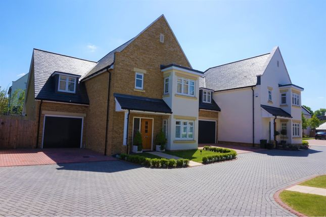 Thumbnail Detached house for sale in Radleigh Place, Beckenham