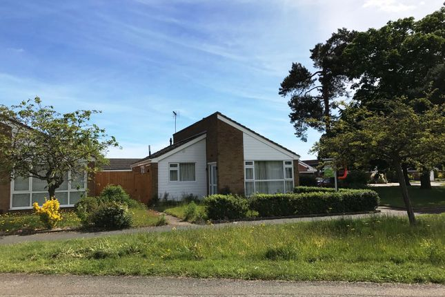 Thumbnail Detached bungalow for sale in Crowland Close, Ipswich