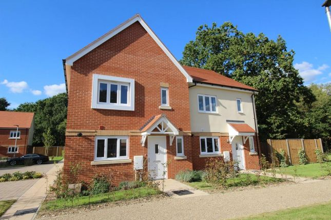 Thumbnail Semi-detached house for sale in Chobham, Woking