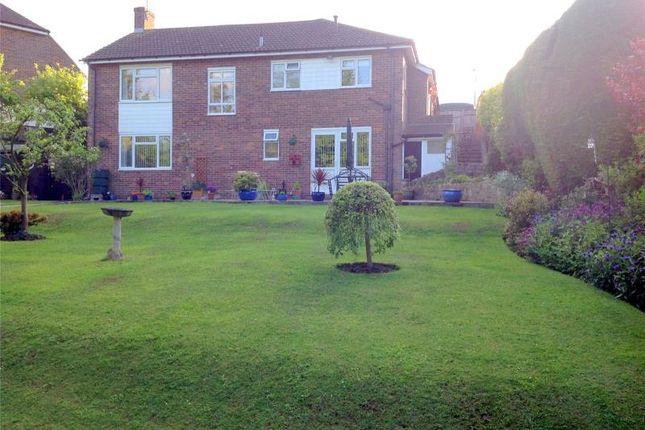 Thumbnail Detached bungalow for sale in Summer Close, Tenterden, Kent