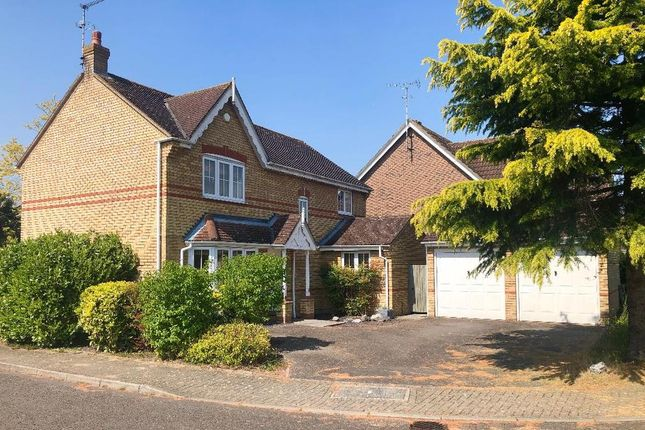 Thumbnail Detached house to rent in Highclere Road, Great Notley, Braintree