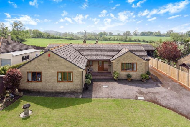 Thumbnail Detached bungalow for sale in Back Drove, Leigh, Sherborne, Dorset