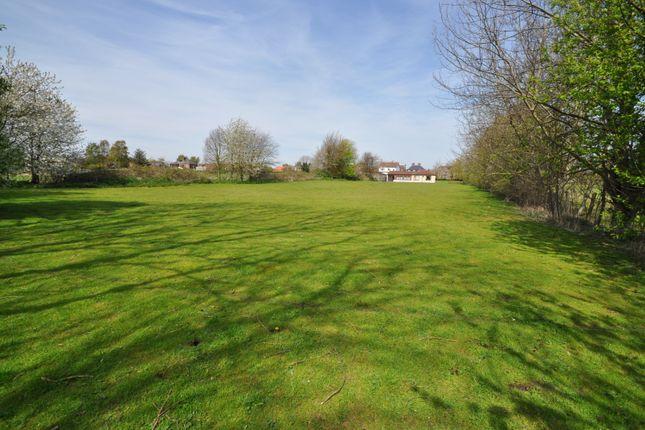 Thumbnail Bungalow for sale in North Moore Lane, Cottingham, Cottingham