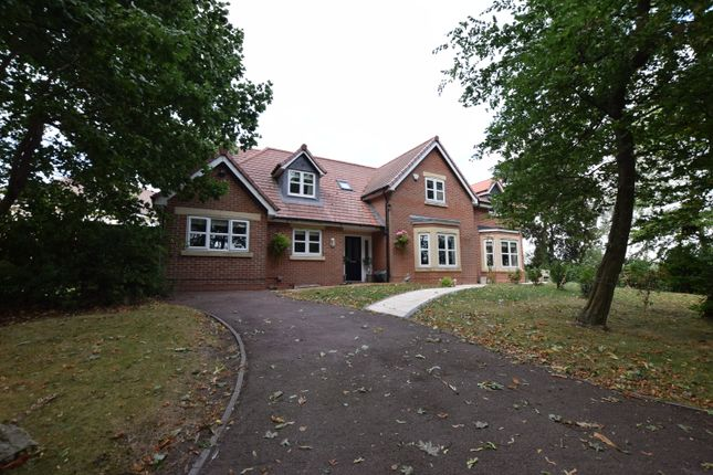 Thumbnail Detached house to rent in Tudor Court, Draycott, Derby