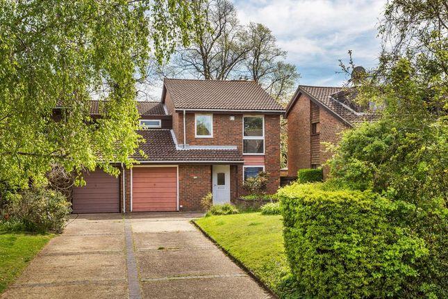 Thumbnail Semi-detached house to rent in Lyndhurst Close, Croydon