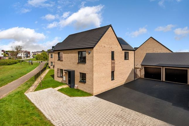 Thumbnail Detached house for sale in Taylor Meadows, Oxley Park, Milton Keynes