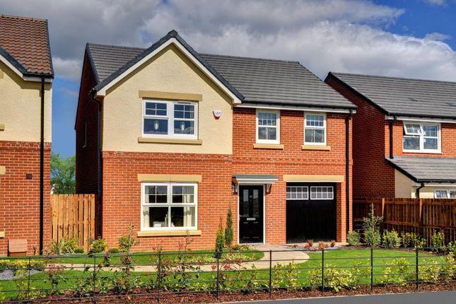 "Thumbnail Detached house for sale in ""Eynsham"" at Monkton Lane, Hebburn"