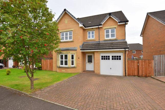 Thumbnail Detached house to rent in Leggate Way, Bellshill