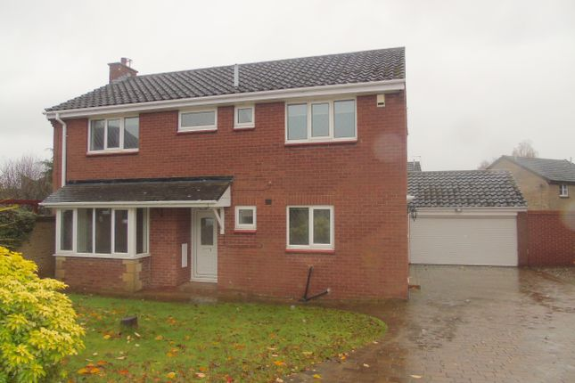 Thumbnail Detached house for sale in Wimpole Road, Stockton-On-Tees