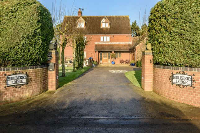Thumbnail Detached house for sale in Herne Lane, Beeston, King's Lynn