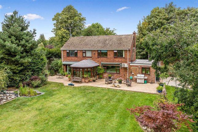 Thumbnail Detached house for sale in Canterbury Road, Kennington, Ashford