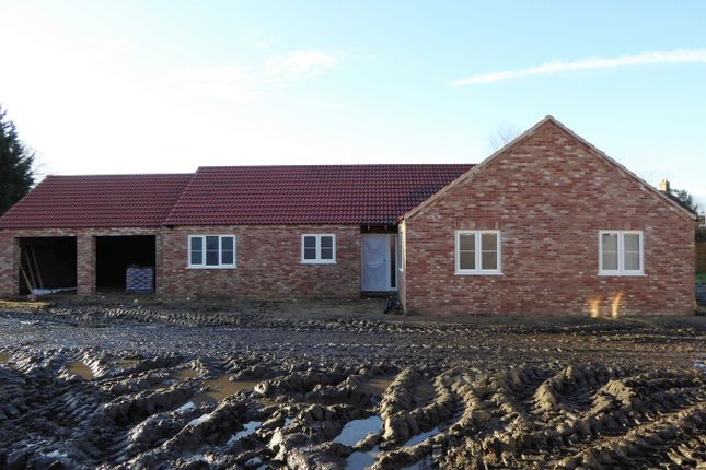 Thumbnail Detached bungalow for sale in Feltwell Road, Southery, Downham Market