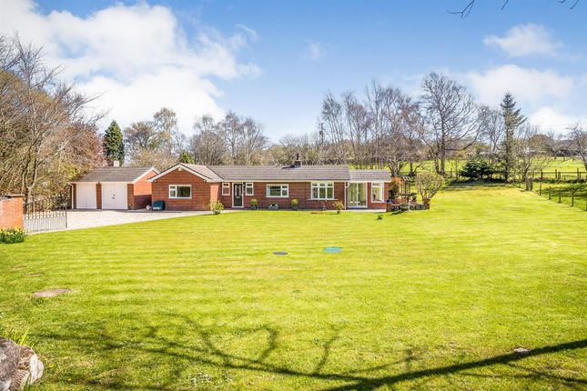 Thumbnail Detached bungalow for sale in Hafod Moor, Gwernaffield, Mold