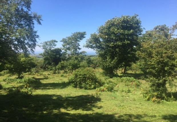Thumbnail Land for sale in Plot 1, Gilgarran Park, Workington, Cumbria