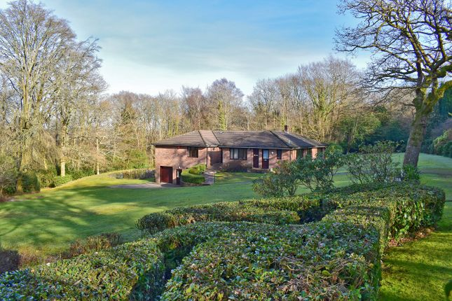 Thumbnail Bungalow for sale in Boldre Grange, Boldre, Lymington