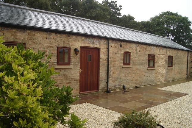 Thumbnail Semi-detached bungalow to rent in Bolton Lane, Bolton, Near Wilberfoss