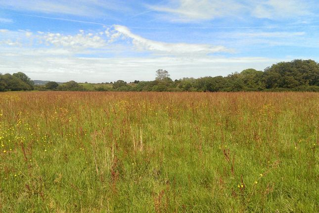Thumbnail Land for sale in Whitecross Lane, Shanklin