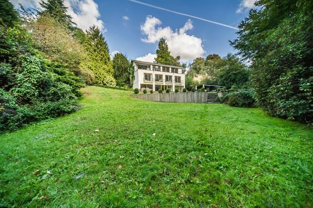 Thumbnail Detached house for sale in Birchwood Avenue, Southborough, Tunbridge Wells