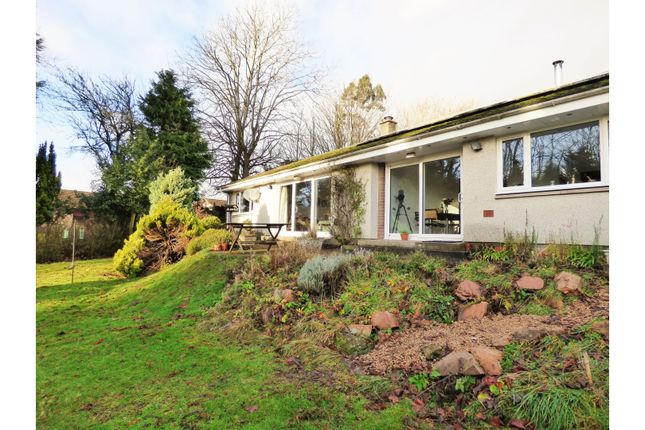 Thumbnail Detached bungalow for sale in Leslie Road, Scotlandwell